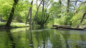 Celebrate Spring at Brandywine Creek State Park