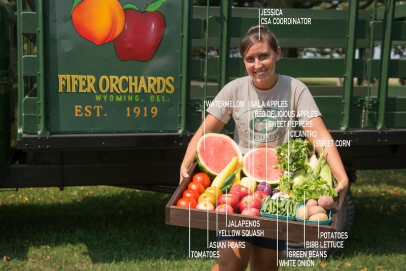 How to Eat Fresh and Local this Summer at ResideBPG: Sign Up for Fifer's Delmarva Box CSA Program
