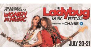 Ladybug Festival This Weekend!