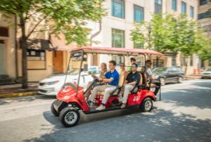 wilmingo golf cart