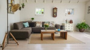 How to Maintain a Healthy Living Environment as a Renter